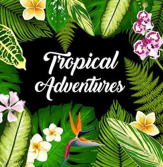 Póster de plantas y flores tropicales, hojas de palmera.