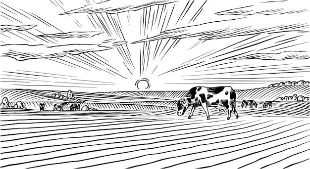 Prado rural. un paisaje de pueblo con vacas, colinas y una granja. soleada vista panorámica del país dibujado a mano