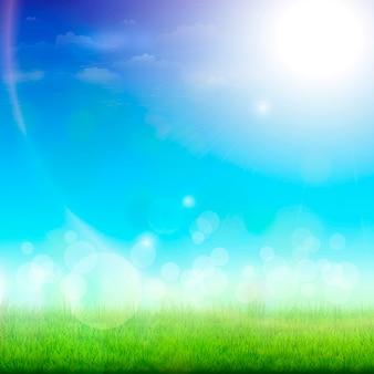 Prado verde en un día soleado.