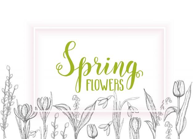 Primavera con flores dibujadas a mano-lirios del valle, tulipán, sauce, campanilla de invierno, azafrán - aislado en blanco. letras hechas a mano- primavera