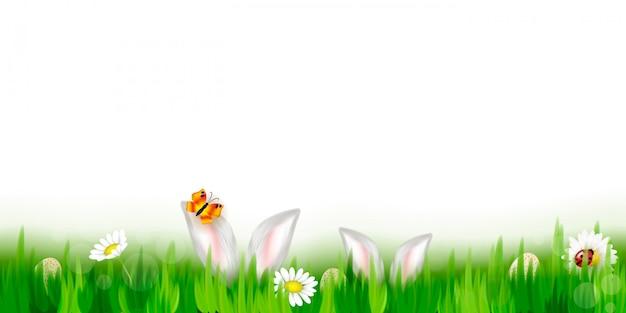 Primavera fresca hierba verde sobre fondo de cielo azul.