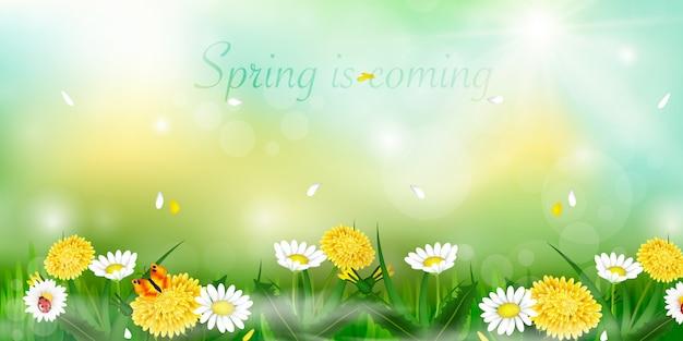 La primavera está llegando. hola fondo de primavera con hermosas flores. diseño de primavera.