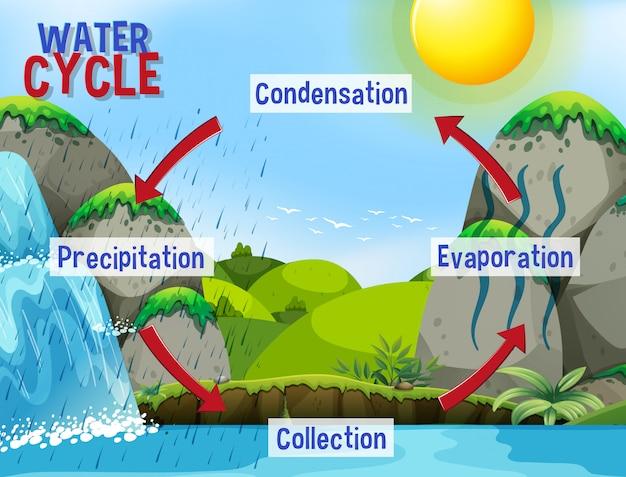 Proceso del ciclo del agua en la tierra - científico
