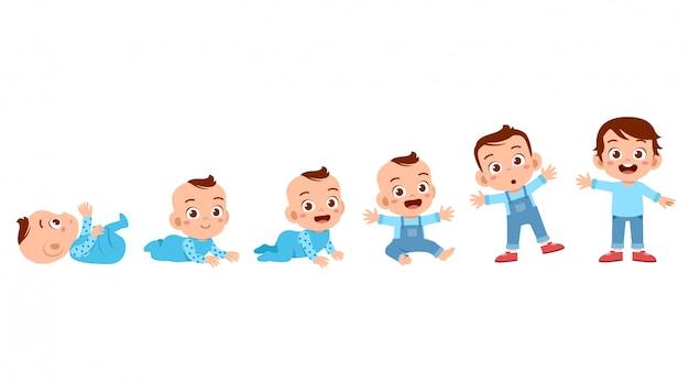 Proceso de ciclo de crecimiento del niño