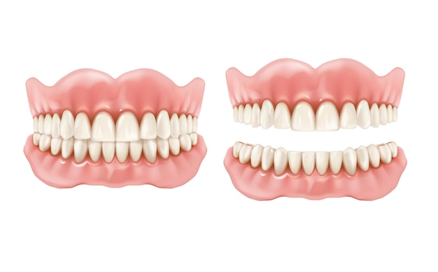 Prótesis, dientes y mandíbula dentales, prótesis realistas, dientes y boca.