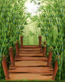 Puente de madera en bosque de bambú