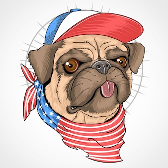 Pug dog usa flag