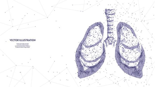 Pulmones humanos y tráquea. anatomía del órgano. neumonía por coronavirus, cáncer, trasplante de órganos, tuberculosis, asma. tecnología médica innovadora. ilustración de estructura metálica de baja poli 3d.