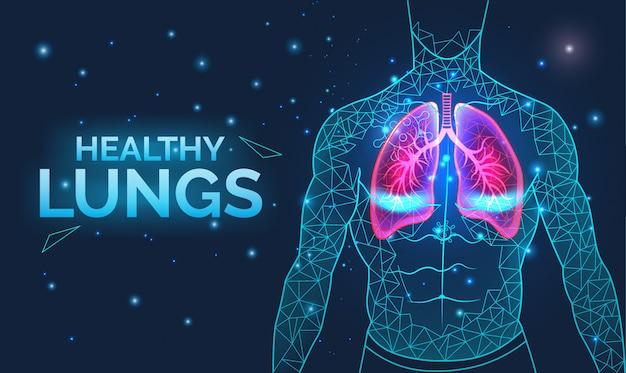 Pulmones sanos, sistema respiratorio, prevención de enfermedades, con órganos del cuerpo humano, anatomía, respiración y cuidado de la salud.