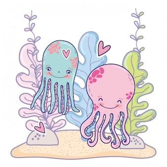 Pulpo pareja animales con corazón y plantas de algas.