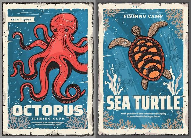 Pulpos, tortugas marinas, calamares, cangrejos, carteles de pesca