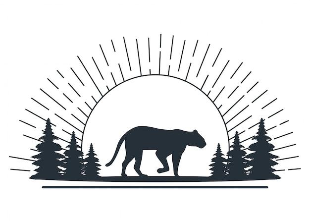 Puma salvaje en la escena de la jungla