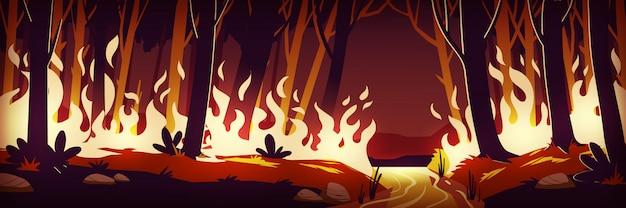 Quema de incendios forestales en la noche, fuego en el bosque