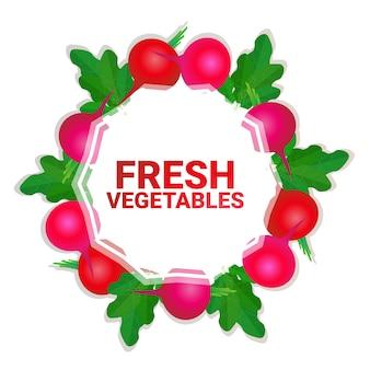 Rábano vegetal colorido círculo copia espacio orgánico sobre fondo blanco patrón estilo de vida saludable o concepto de dieta