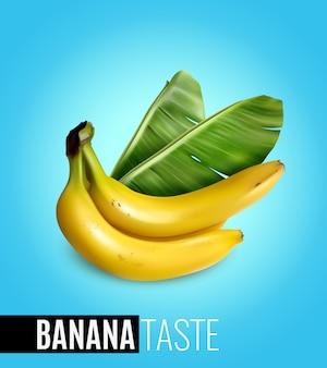 Racimo de plátanos maduros con hoja de palma que anuncia el sabor realista de la comida natural cartel azul