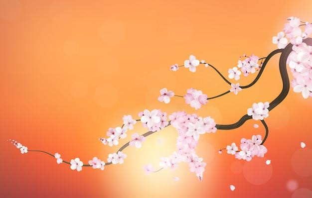 Rama de cerezo de sakura japon realista