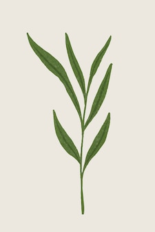 Rama con elemento de diseño de hojas verdes