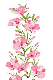 Rama de flor de alstromeria aislada sobre fondo blanco.