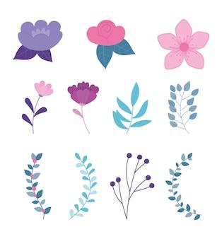 Rama de flores deja iconos de naturaleza botánica