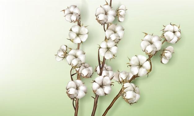 Ramas de algodón realistas con flores y tallos.
