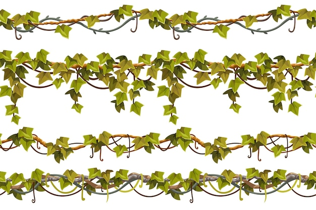 Ramas de liana hojas conjunto de bordes