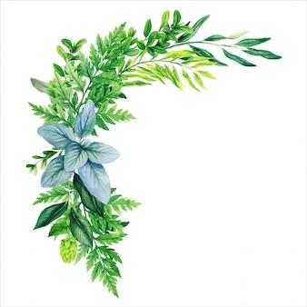 Ramo decorativo verde, compuesto de hojas verdes frescas