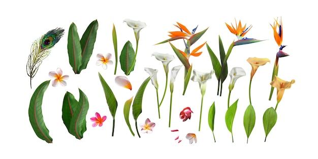 Ramo de flores con la hoja exótica aislada en el fondo blanco.