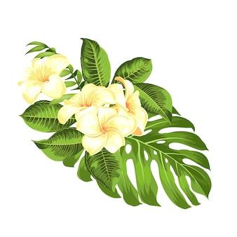 Ramo de flores tropicales para su tarjeta de vacaciones de verano.