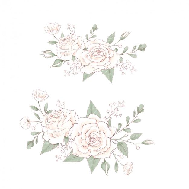 Ramo de rosas delicadas. dibujo a mano