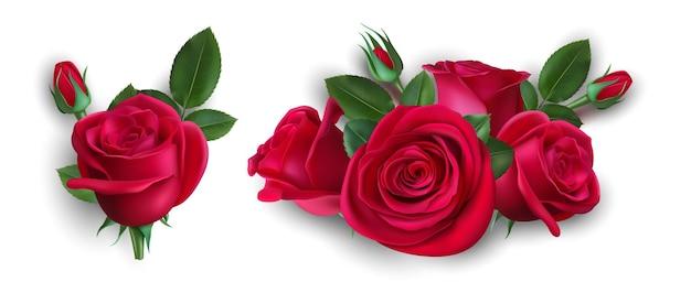 Ramo de rosas realista. rosa roja aislada con hojas. boutonniere de boda, ilustración de vector de elemento decorativo floral. ramo floral de rosas, decoración de flores en flor