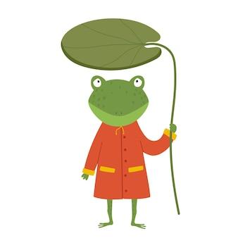 Rana de dibujos animados lindo en impermeable la rana sostiene un nenúfar en sus manos