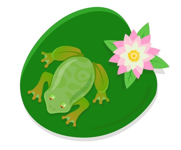 Una rana viva se sienta en un nenúfar en un estanque. ilustración de vector de personaje en color