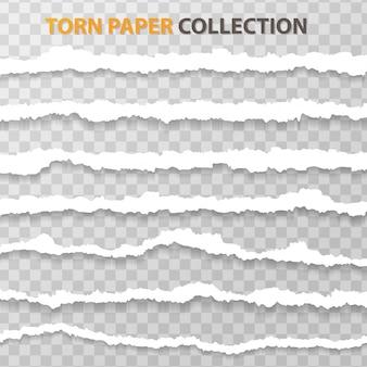 Rasgue el papel o el borde en un fondo transparente.
