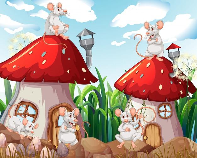 Ratón en casa de setas