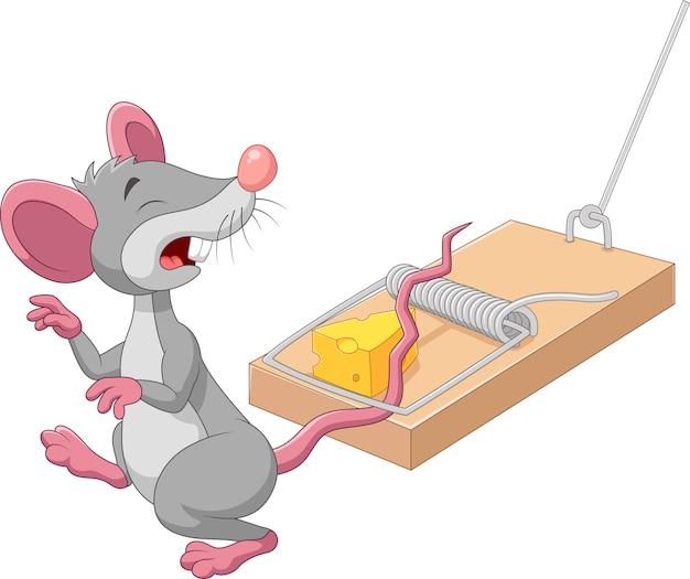 Ratón de dibujos animados en una trampa para ratones aislada sobre fondo blanco