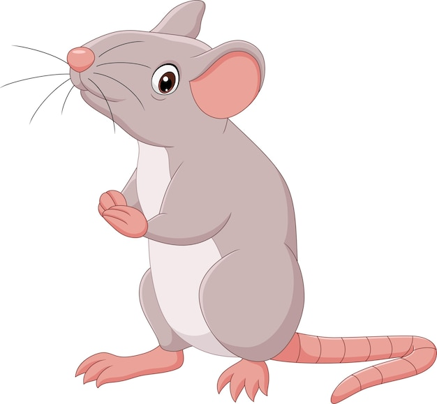 Ratón feliz de dibujos animados sobre fondo blanco