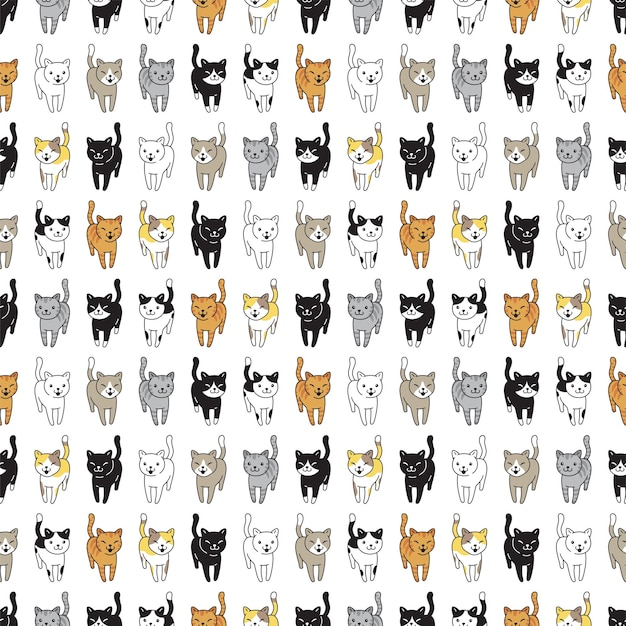 Raza de gatito de patrones sin fisuras de gato