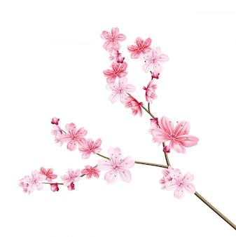 Realista árbol de sakura con pétalos de rosa