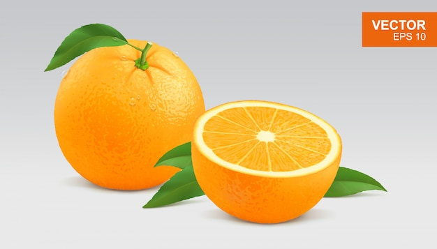 Realista entero y rodaja de naranja