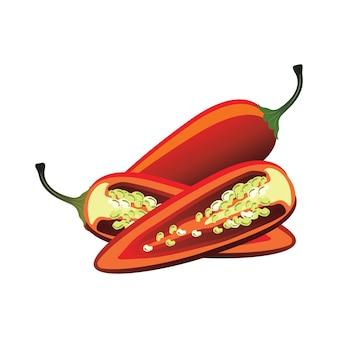 Rebanadas de pimiento jalapeño crudo. ilustración vectorial