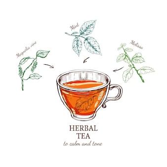 Receta de dibujo de té de hierbas