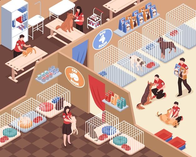 Refugio de animales con personal habitaciones de voluntarios para perros y gatos veterinario servicio ilustración vectorial isométrica