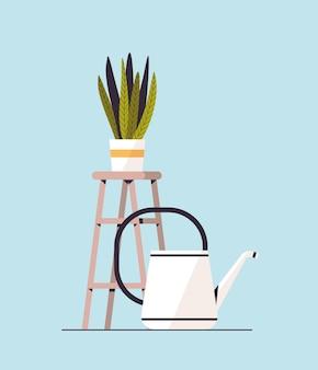 Regadera cerca del concepto de jardín botánico de invernadero de plantación de plantas en maceta