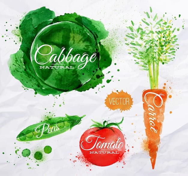 Repollo de acuarela de verduras