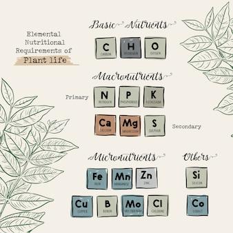 Requisitos nutricionales elementales de la vida vegetal