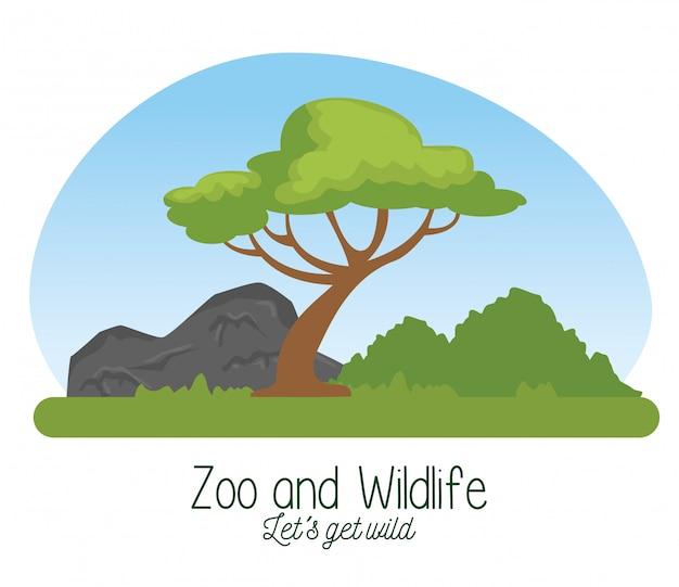 Reserva de vida silvestre con árboles y montañas naturales