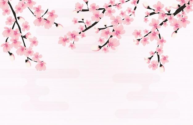 Resumen floral sakura flor fondo natural japonés