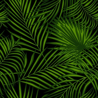 Resumen de plantas exóticas de patrones sin fisuras en negro