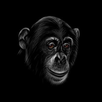 Retrato de una cabeza de chimpancé sobre un fondo negro. ilustración