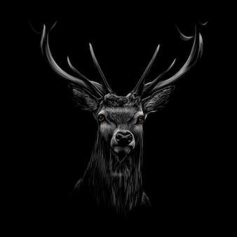 Retrato de una cabeza de ciervo sobre un fondo negro. ilustración vectorial